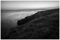 Coastline with wildflowers at sunset near Iceberg Point, Lopez Island. Washington ( black and white)