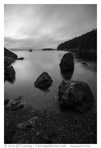 Watmough Bay at dawn, Lopez Island. Washington (black and white)