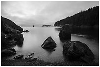 Rocks and Watmough Bay, Lopez Island. Washington ( black and white)