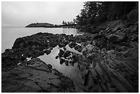 Tidepool, Watmough Bay, Lopez Island. Washington ( black and white)