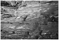 Polished slab and pebbles, Watmough Bay, Lopez Island. Washington ( black and white)