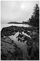 Rocky shore with pool and marine layer, Watmough Bay, Lopez Island. Washington ( black and white)