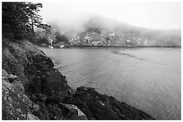 Watmough Bay in fog, Lopez Island. Washington ( black and white)