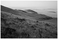 Rocks and grasses on hills and plain, Saddle Mountain Unit, Hanford Reach National Monument. Washington ( black and white)