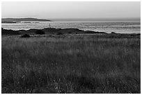 Meadow and Cattle Point Lighthouse, San Juan Islands National Monument, San Juan Island. Washington ( black and white)