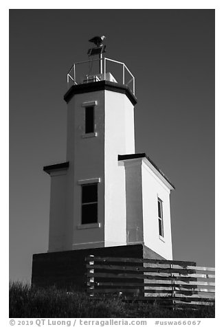 Cattle Point Lighthouse with perched bald eagle, San Juan Islands National Monument, San Juan Island. Washington (black and white)