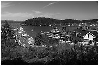 Port of Friday Harbor, San Juan Island. Washington ( black and white)