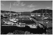 Marina, Friday Harbor, San Juan Island. Washington ( black and white)