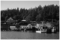Orcas Ferry terminal, Orcas Island. Washington ( black and white)