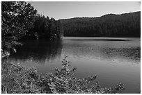 Mountain Lake, Moran State Park. Washington ( black and white)