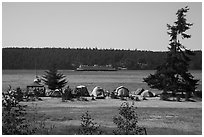 Campground, Lopez Island. Washington ( black and white)