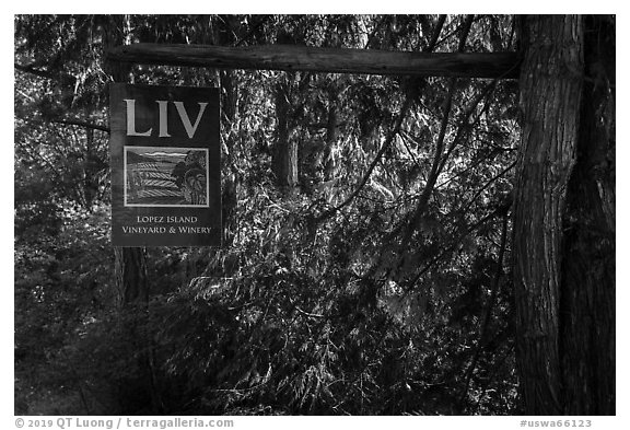 Lopez Island Vineyard and Winery sign, Lopez Island. Washington (black and white)