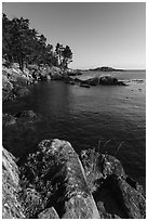 Shark Reef Sanctuary, Lopez Island. Washington ( black and white)