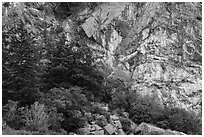 Cliffs, Watmough Bay, San Juan Islands National Monument, Lopez Island. Washington ( black and white)