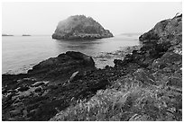 Castle Island from Point Colville, San Juan Islands National Monument, Lopez Island. Washington ( black and white)