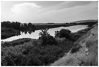 Banks of free-flowing section of Columbia River with verdant vegetation, Ringold Unit, Hanford Reach National Monument. Washington ( black and white)