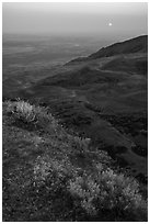 Saddle Mountain, sunrise, Hanford Reach National Monument. Washington ( black and white)