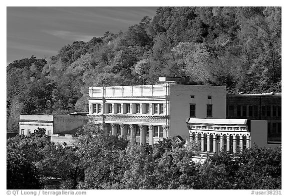 Historic buildings and trees in fall foliage. Hot Springs, Arkansas, USA (black and white)
