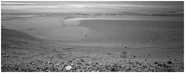 Beach seascape with seashells, dawn, Sanibel Island. Florida, USA (Panoramic black and white)