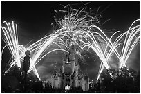 Night Fireworks, Cinderella Castle, Walt Disney World. Orlando, Florida, USA (black and white)