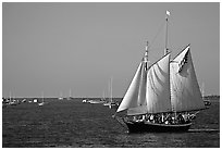 Old sailboat. Key West, Florida, USA (black and white)