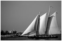 Historic sailboat. Key West, Florida, USA (black and white)