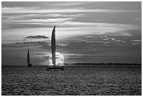 Sailboats viewed against sun disk at sunset. Key West, Florida, USA (black and white)