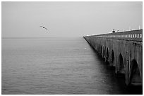 Old Seven-mile bridge. The Keys, Florida, USA (black and white)