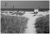 Path, dune grass, and lifeguard platform, Jetty Park. Cape Canaveral, Florida, USA (black and white)