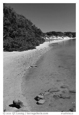 Beach on the Matanzas River, Fort Matanzas National Monument. St Augustine, Florida, USA (black and white)