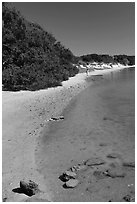 Beach on the Matanzas River, Fort Matanzas National Monument. St Augustine, Florida, USA ( black and white)