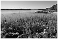 Matanzas River, and fort in the distance, Fort Matanzas National Monument. St Augustine, Florida, USA ( black and white)