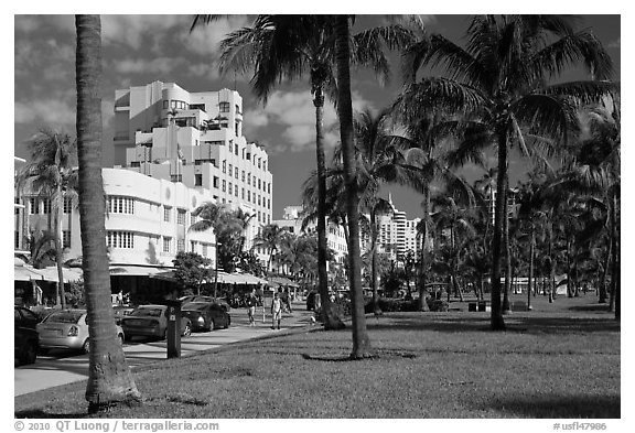 Palm trees and Art Deco hotels, South Beach, Miami Beach. Florida, USA (black and white)