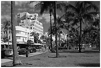 Palm trees and Art Deco hotels, South Beach, Miami Beach. Florida, USA ( black and white)