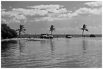 Flooded lot and Biscayne Bay, Matheson Hammock Park, Coral Gables. Florida, USA (black and white)