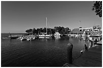 Tiny marina on Vaca Key. The Keys, Florida, USA ( black and white)