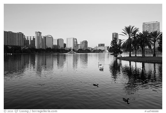 City skyline with row of palm trees at sunrise, Sumerlin Park. Orlando, Florida, USA (black and white)