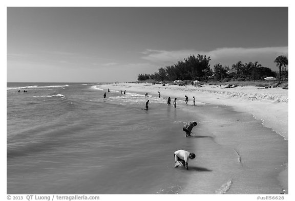Turner Bearch, Captiva Island. Florida, USA (black and white)