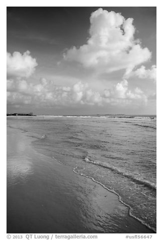 Clouds and reflections, Fort De Soto beach. Florida, USA (black and white)