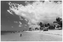 Sombrero Beach, Marathon Key. The Keys, Florida, USA ( black and white)