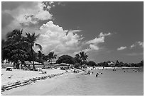 Sombrero Beach in summer, Marathon Key. The Keys, Florida, USA ( black and white)