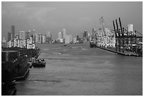 Miami port and skyline at sunrise. Florida, USA ( black and white)