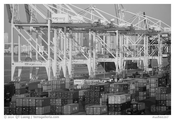Shipping containers and cranes, Port of Miami. Florida, USA (black and white)