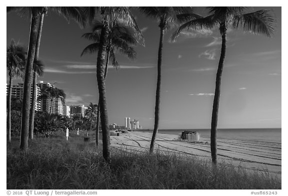 Ocean beach, North Beach, Miami Beach. Florida, USA (black and white)