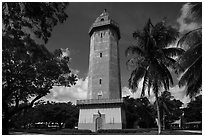 Alhambra Water Tower and trees. Coral Gables, Florida, USA ( black and white)