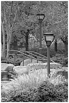 Lamp posts and foliage in autum colors, Centenial Olympic Park. Atlanta, Georgia, USA (black and white)