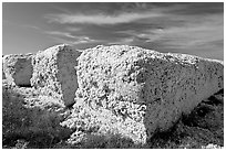 Cotton modules. Louisiana, USA ( black and white)