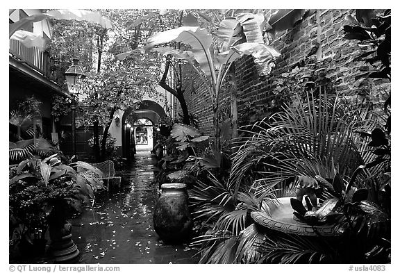 An inside courtyard in the French Quarter. New Orleans, Louisiana, USA (black and white)