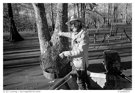 Bayou guide of French descent retriving net,  Lake Martin. Louisiana, USA (black and white)