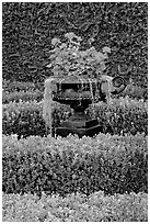 Vasque with flowers and spanish moss in garden. Natchez, Mississippi, USA ( black and white)